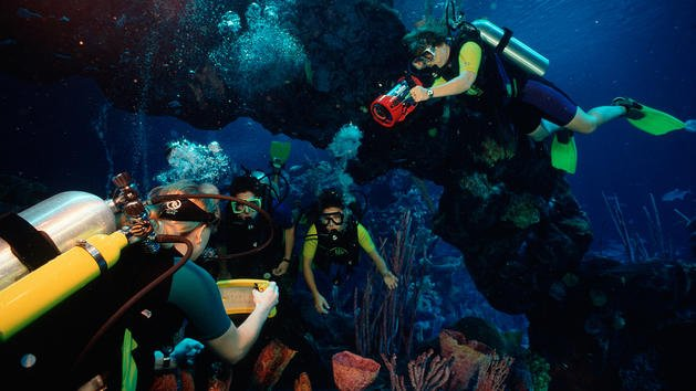 Photo credit: Epcot Seas Adventures – DiveQuest