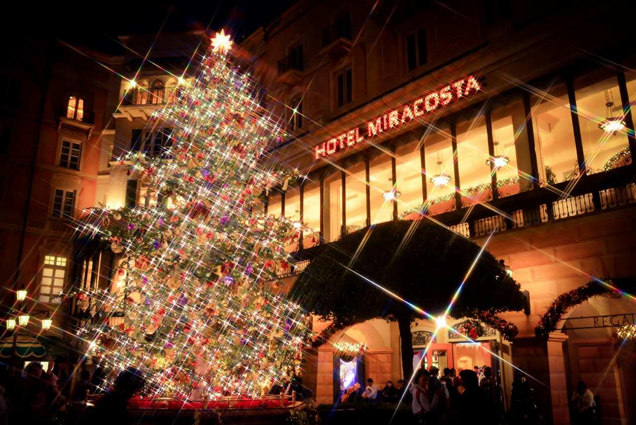 sea christmastree1_1