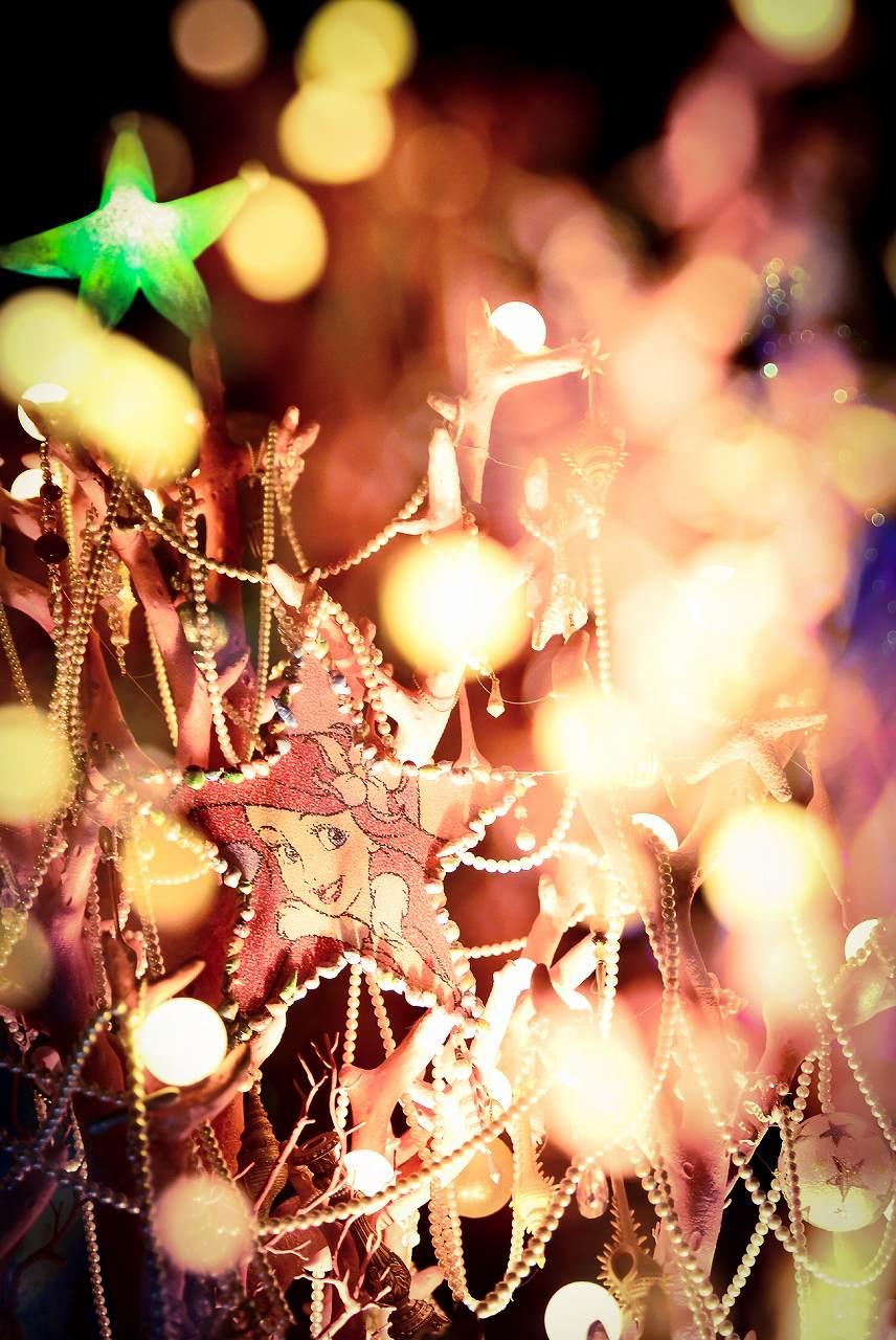 sea christmastree1_5