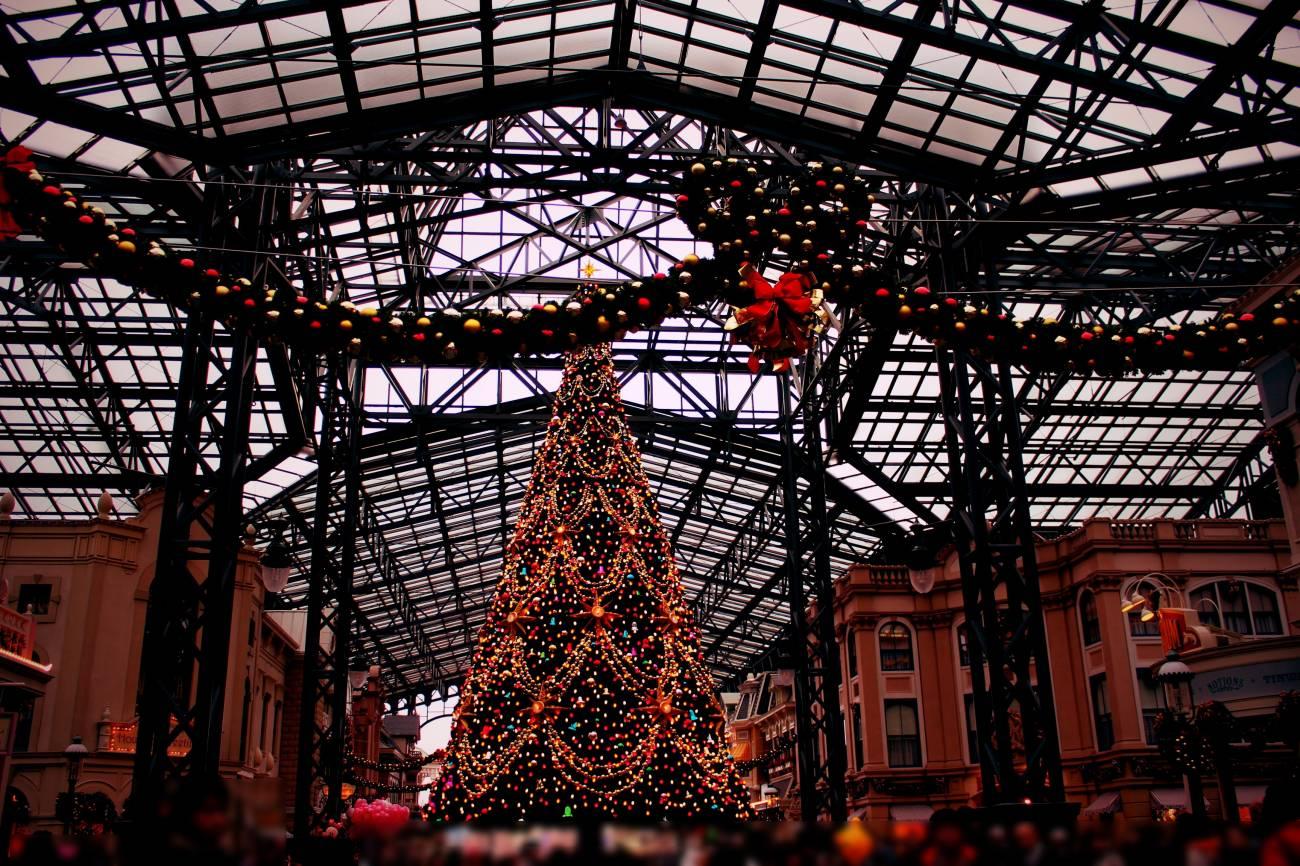 christmas tree 20141105